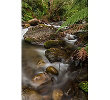 Mountain Creek  Photographic Print