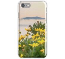 Channel Islands National Park iPhone Case/Skin
