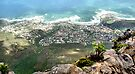 Cape Town Suburbs from Table Mountain by Carole-Anne