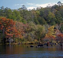Mountain Fork Park by Carolyn  Fletcher