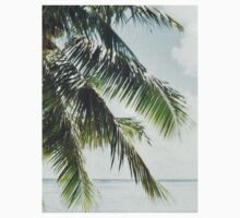 Palm Tree Vintage by Slushylq