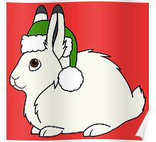 White Arctic Hare with Christmas Green Santa Hat Poster