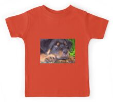 Photographic Portrait Of A Young Male Rottweiler Kids Tee