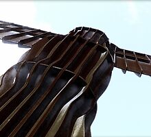 Angel of the North by coastimages
