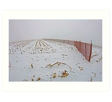 Fence In The Snow Art Print