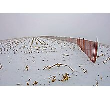 Fence In The Snow Photographic Print