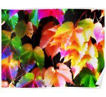 Orton Autumn Poster