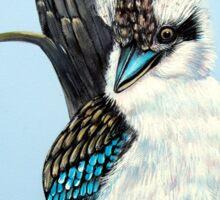 Sitting Pretty, Kookaburra Sticker