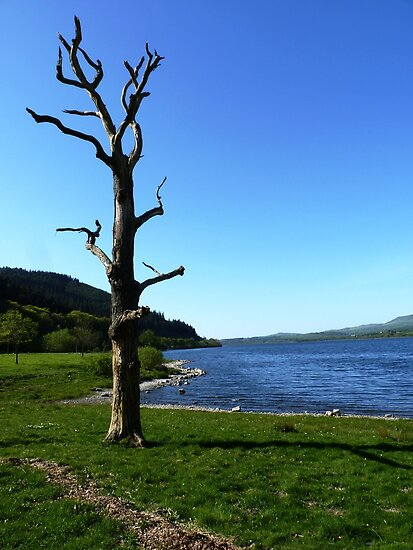 Bassenthwaite Lake, Cumbria #1 by acespace