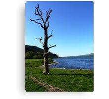 Bassenthwaite Lake, Cumbria #1 Canvas Print