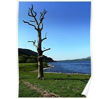 Bassenthwaite Lake, Cumbria #1 Poster