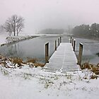 Snow on Pier, In Color by jpsphotoart