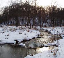 Winter in Spring Valley Park by jpsphotoart