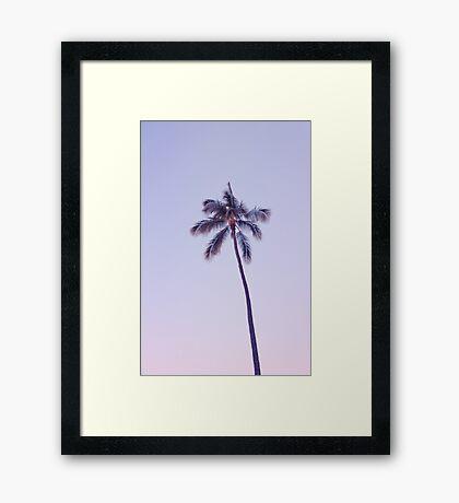 palm tree ver.pink Framed Print
