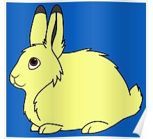 Yellow Arctic Hare Poster