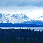 Wilson Glacier Pan by Yukondick