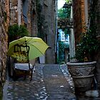 Old Town Alley | Nice, France by rubbish-art