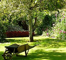 Wheelbarrow in Orchard | Lavaré, France by rubbish-art