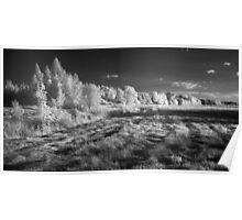 Infrared panorama Poster