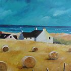 Balmedie Cottages by ALICE STUART