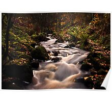 Wyming Brook in Autumn Poster