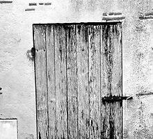 Porte gris by Wintermute69