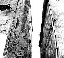 Vide by Wintermute69