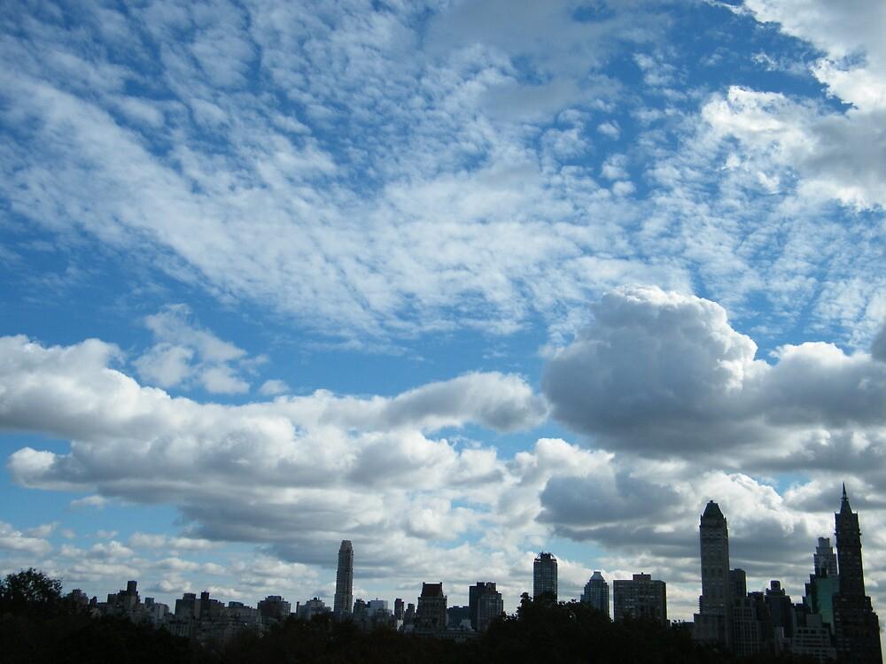 Central Park View, New York City by lenspiro