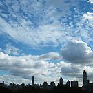 Central Park View, New York City by lenspiro
