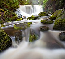 Horseshoe Falls by Nick Skinner