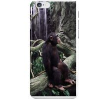 Chimp1 iPhone Case/Skin