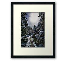 …Less Traveled Framed Print