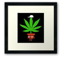 Pot Head Framed Print