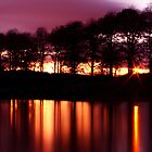 Inverleith At Night by Jordan Moffat