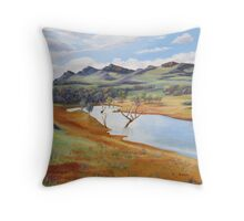 The Dam at Rawnsley Park!, Flinders Ranges. South Australia. Throw Pillow