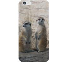 Meerkats iPhone Case/Skin