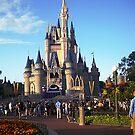 Walt Disney World- Castle by Flippinawesome