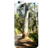 Along a forest Road iPhone Case/Skin