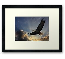 Soar to new heights Framed Print