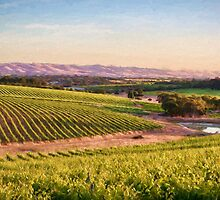 McLaren Vale Magic ED by Ray Warren