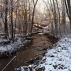 Creek on Manor Furnace Road by jpsphotoart