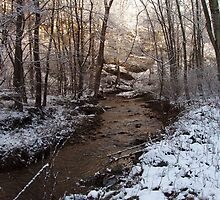 Creek on Manor Furnace Road by jpsphotoart