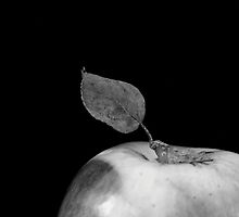 apple by natalie angus