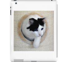 Playtime! iPad Case/Skin