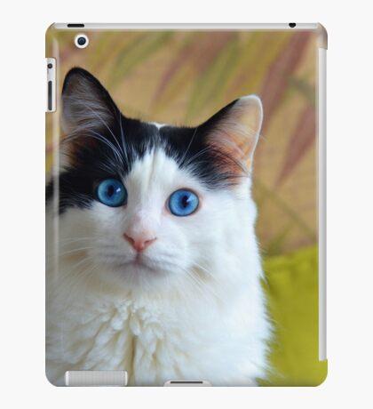 Wondering Kitty, Long iPad Case/Skin