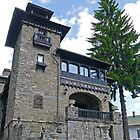 House, Sinaia, Romania by Margaret  Hyde