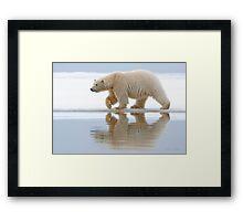 Northern Reflection Framed Print