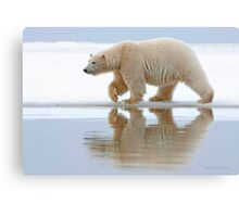Northern Reflection Canvas Print