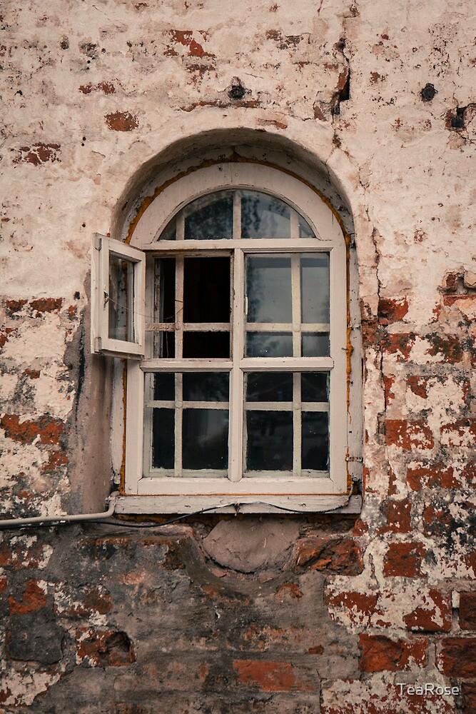 Monks Window by TeaRose