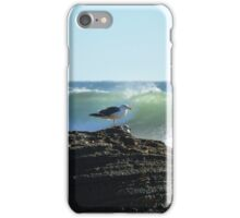 Seagull in Crystal Cove iPhone Case/Skin